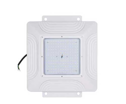 LED Canopy Light 04 Series
